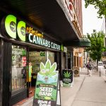 Dispensary Digital Connect Consumers Cannabis