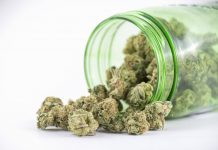 Canadian Recreational Cannabis MOU Signing Agreement