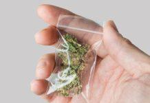 Medical Cannabis Grow Organic Recertification