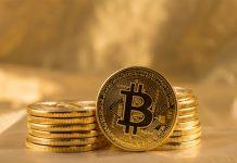 KlickZie Crypto Token Distribution Shareholders