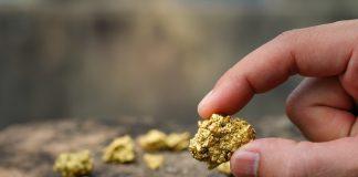 Gold Mining Ore Shipments Subsidiary