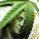 Emerging Growth Medical Marijuana Company