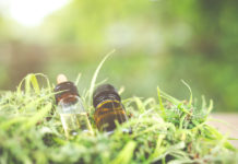 EmergingGrowth.com Cannabis Company - CV Sciences, Inc. (OTCQB: CVSI) gains 35% after Providing Corporate Update to Shareholders