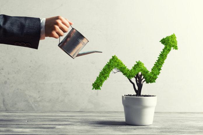 Emerging GrowthCompany