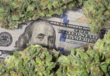 Cannabis - the Fastest Growing Market in the World Says CannaTech Investors are Hungry for Pot Stocks: American Premium Water Corporation (OTC Pink: HIPH)