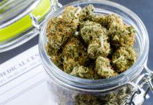 EmergingGrowth.com Cannabis Company - GNCC Capital, Inc. (OTC Pink: GNCP) up 100% after Acquiring BioCann Pharma S.A.S.