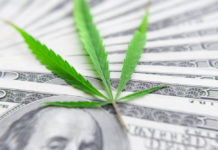 MYM Nutraceuticals (OTCQB: MYMMF) Riding the Crest of the Hemp Tidal Wave