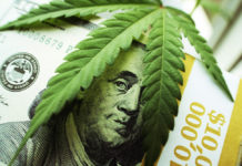 EmergingGrowth.com - Grow Solutions Holdings, Inc. (OTC Pink: GRSO) up 180% after Signing Product/Lease Deal With Sundance Prairie - Projects $215 Million In Revenues Over Five Years