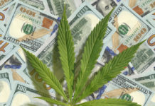 EmergingGrowth.com - Kali-Extracts, Inc. (OTC Pink: KALY) up 40% after Confirming Cannabis Biopharmaceutical Update Targeting $170 Billion Market Scheduled For Release Tomorrow